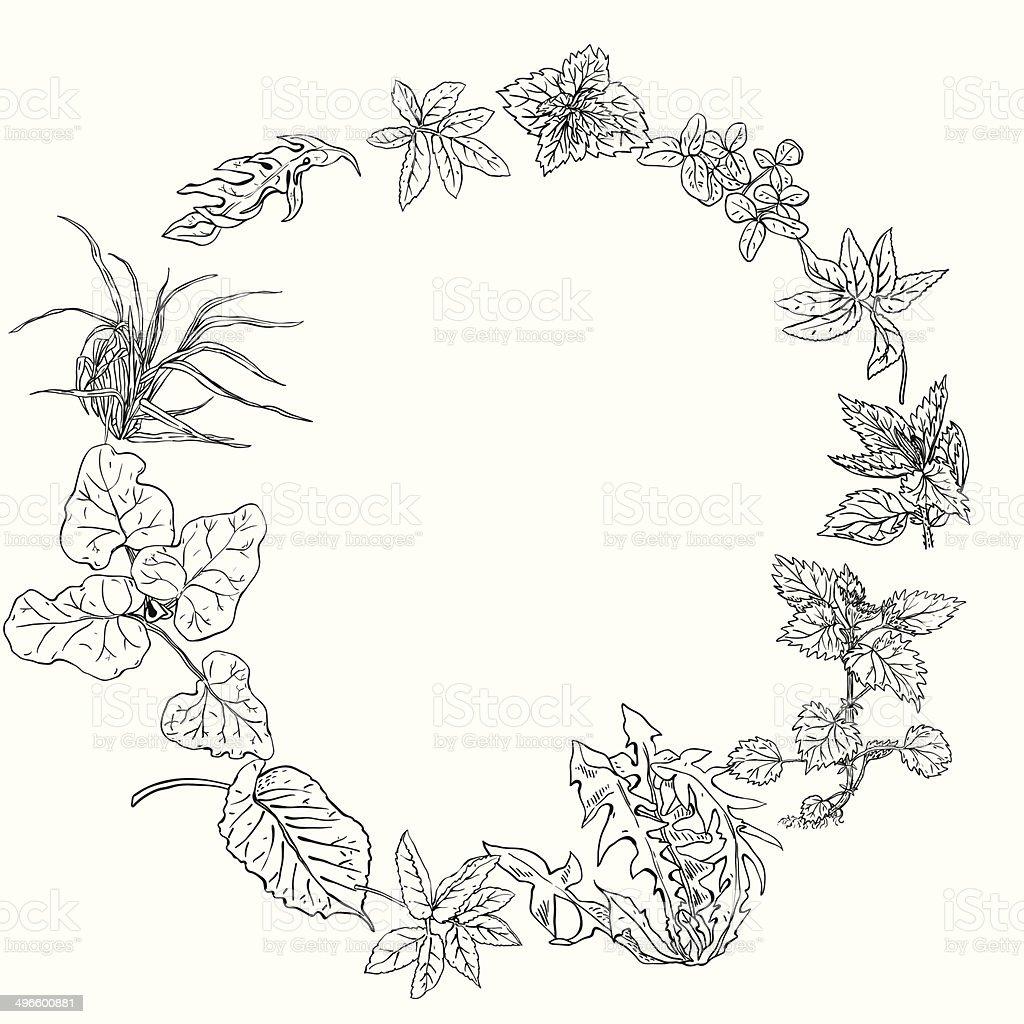Circular pattern, wreath of herbs royalty-free stock vector art