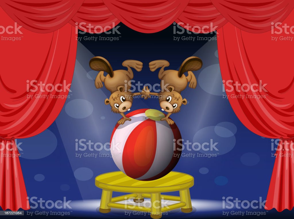 Circus show with the beavers royalty-free stock vector art