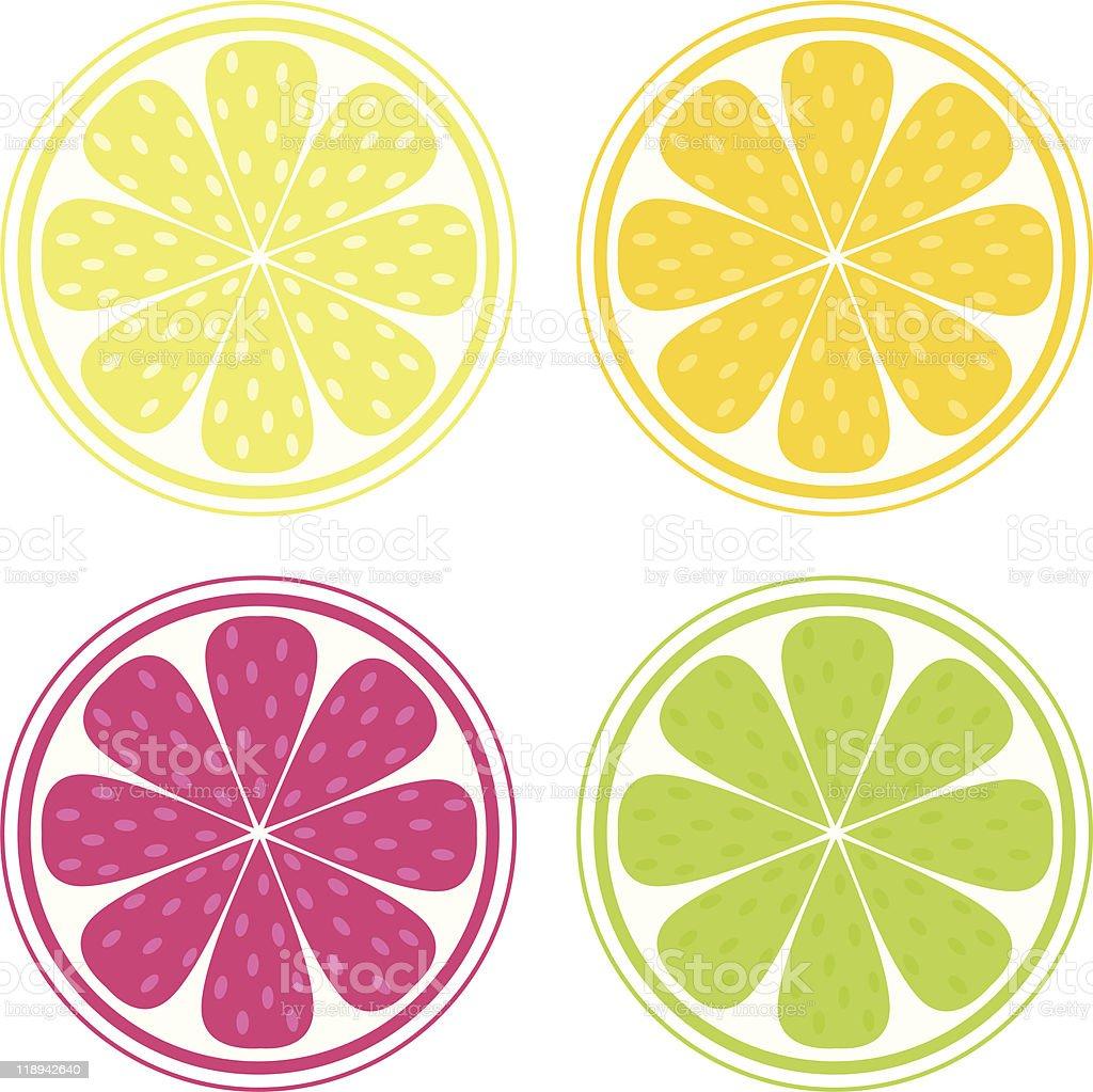 Citrus fruit on white background - lemon, lime, orange, grapefruit royalty-free stock vector art