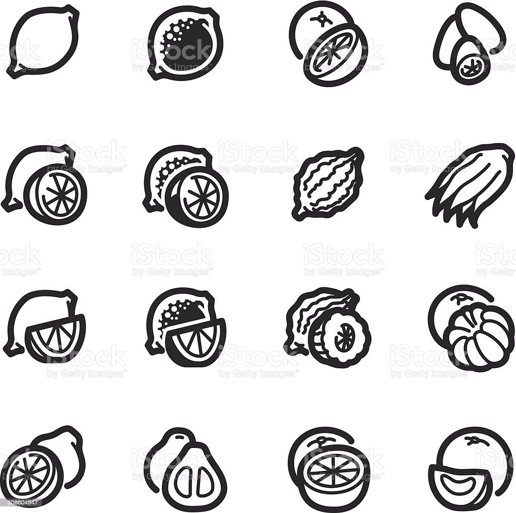 Citrus fruits icons – Bazza series vector art illustration