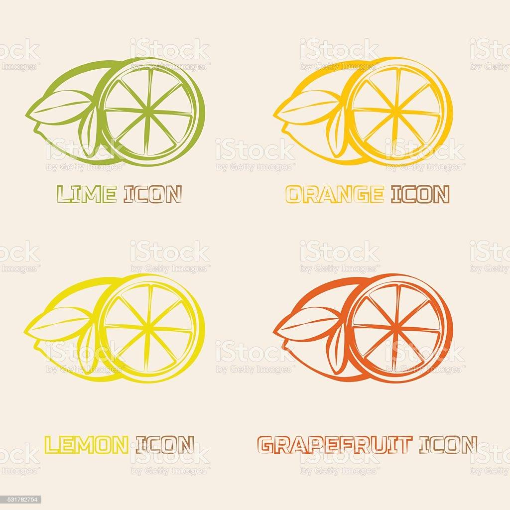 Citrus Ifruits cons. vector art illustration