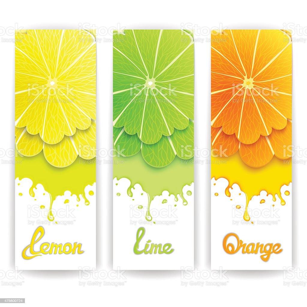 Citrus juice design vector art illustration