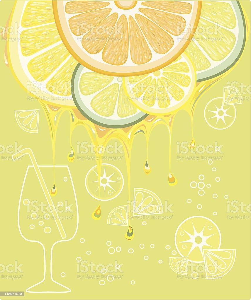 citrus vector art illustration