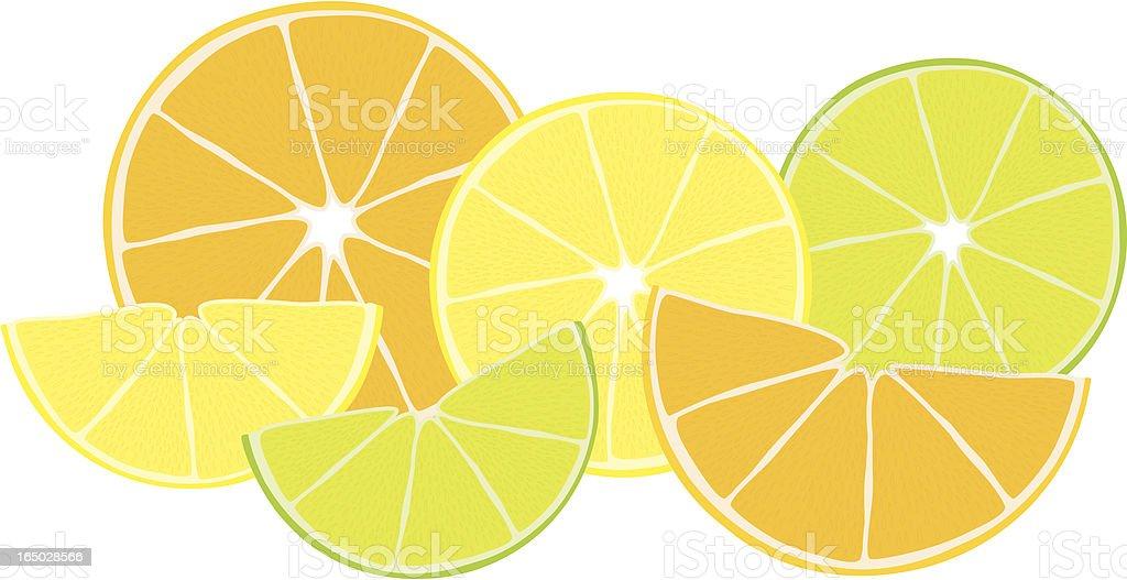 Citrus Zest  - incl. jpeg royalty-free stock vector art