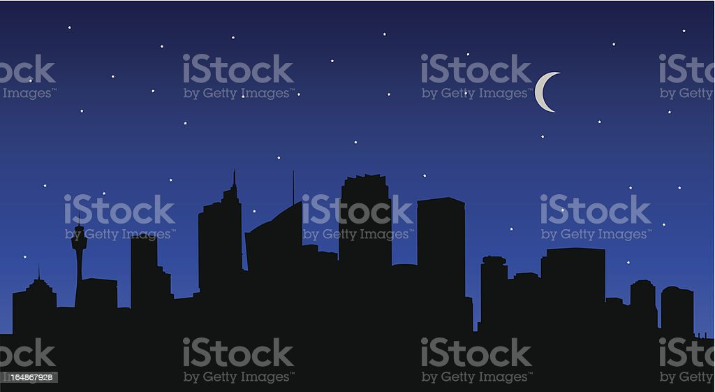 City Skyline at Night (Vector) royalty-free stock vector art