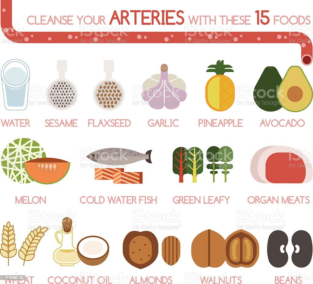 Cleanse your arteries with these 15 foods vector art illustration