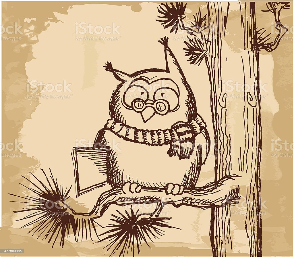 Clever owl with book on  the pine branch vector art illustration