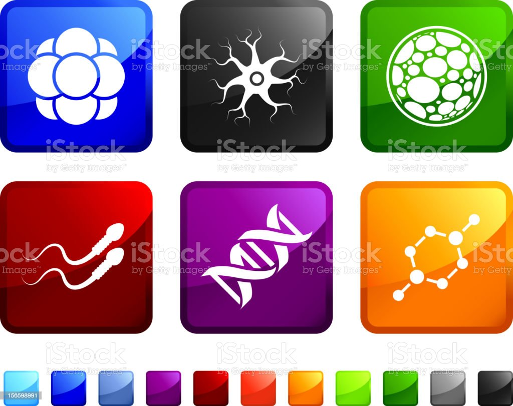 Cloning Genetics royalty free vector icon set royalty-free stock vector art