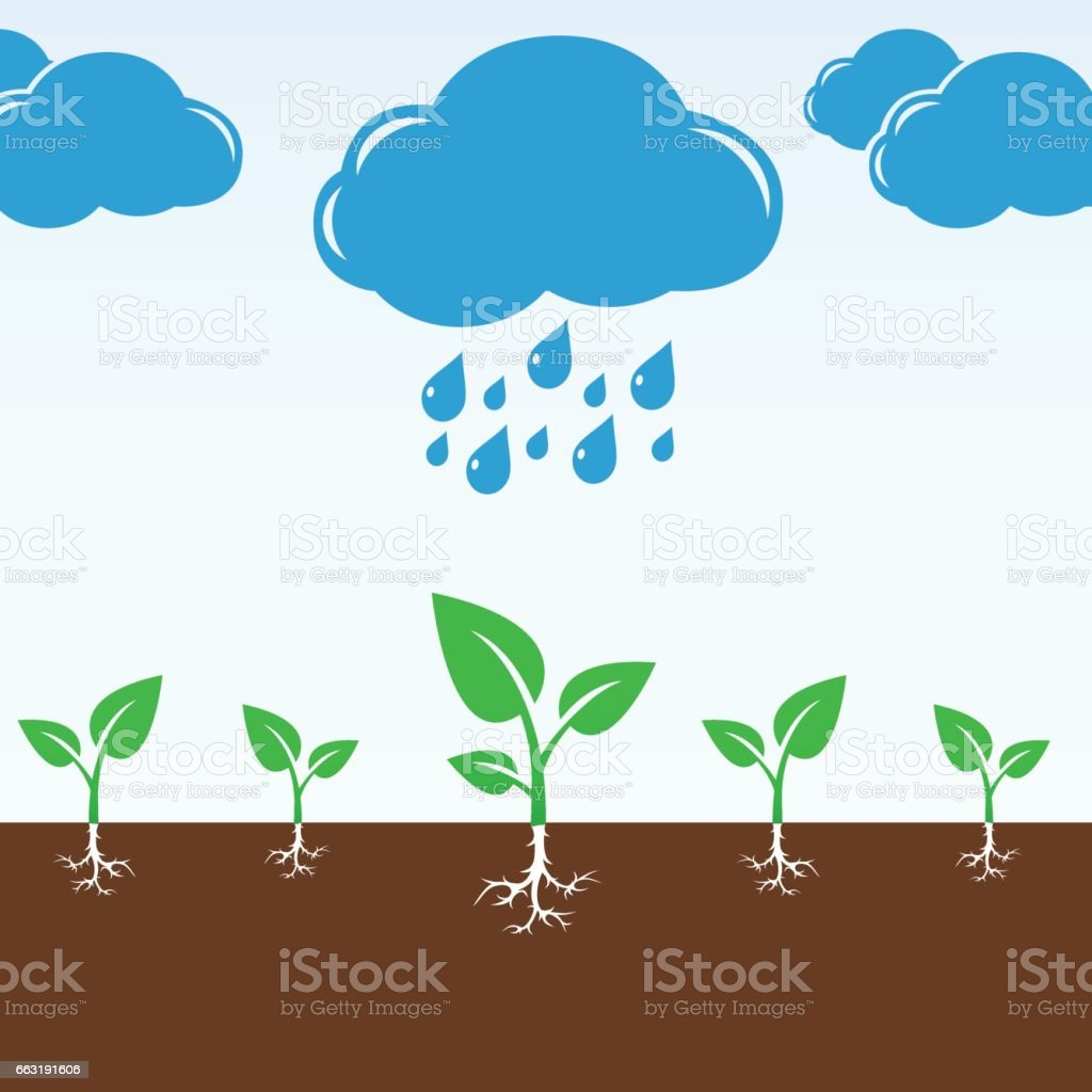 Cloud and rain drops falling on the green sprouts vector art illustration