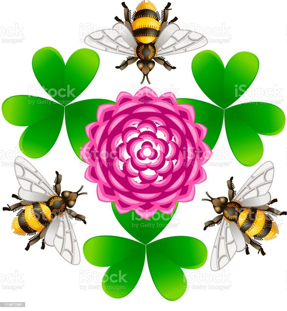 clover_bee vector art illustration