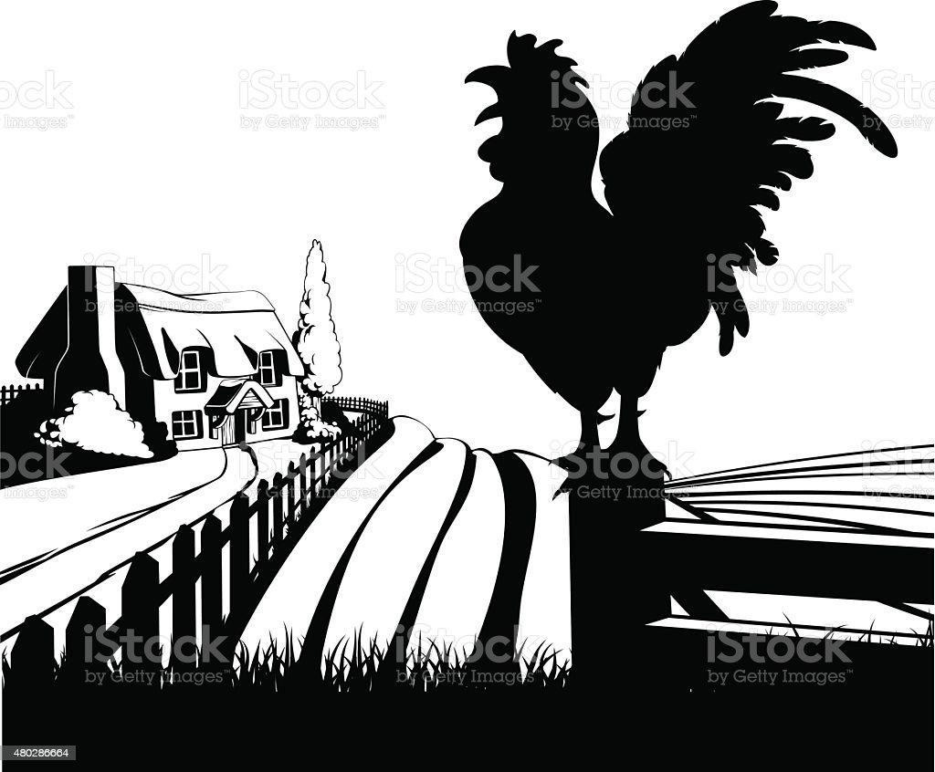 Cockerel crowing farm illustration vector art illustration