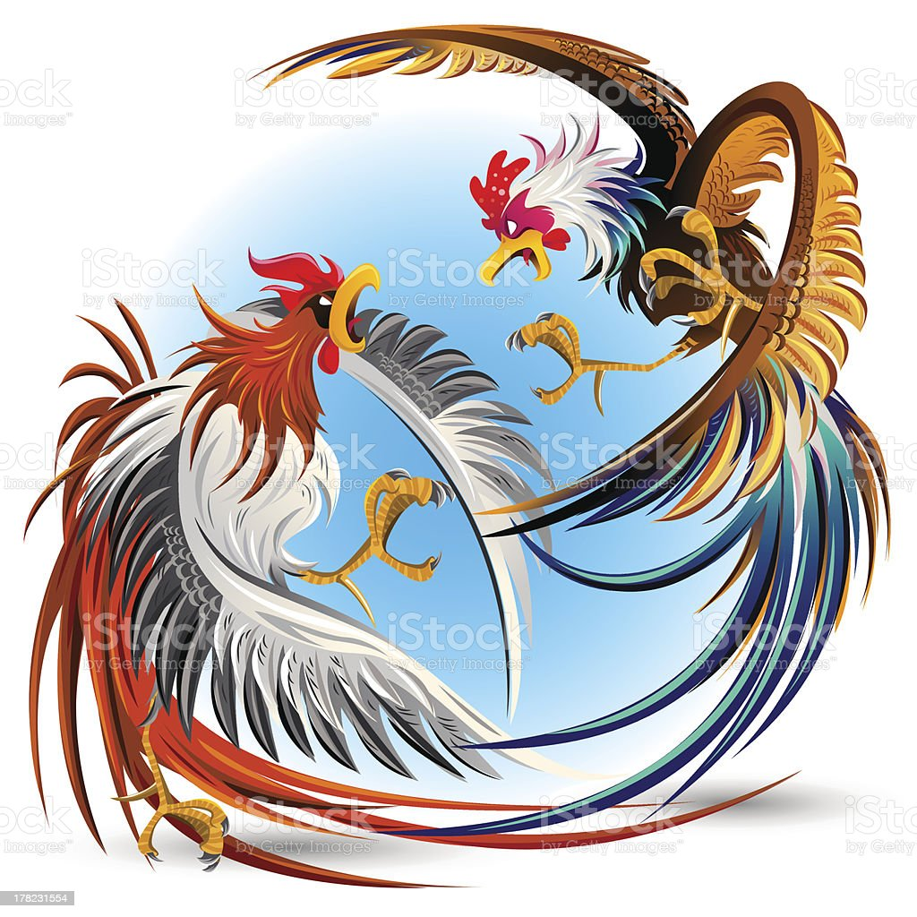 Cockfight Fighting Cocks royalty-free stock vector art