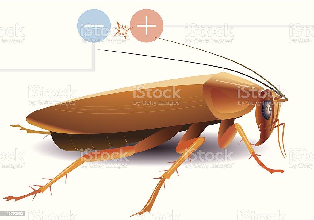 cockroach royalty-free stock vector art