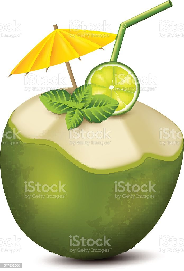 Cocktail in coconut vector art illustration