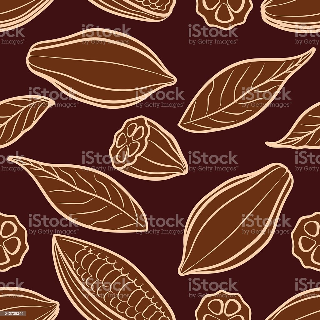 Cocoa beans engraved seamless pattern vector art illustration
