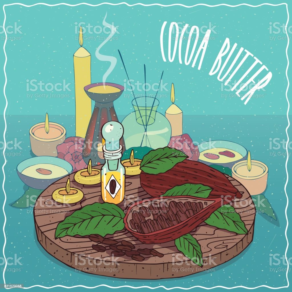 Cocoa butter oil used for aromatherapy vector art illustration