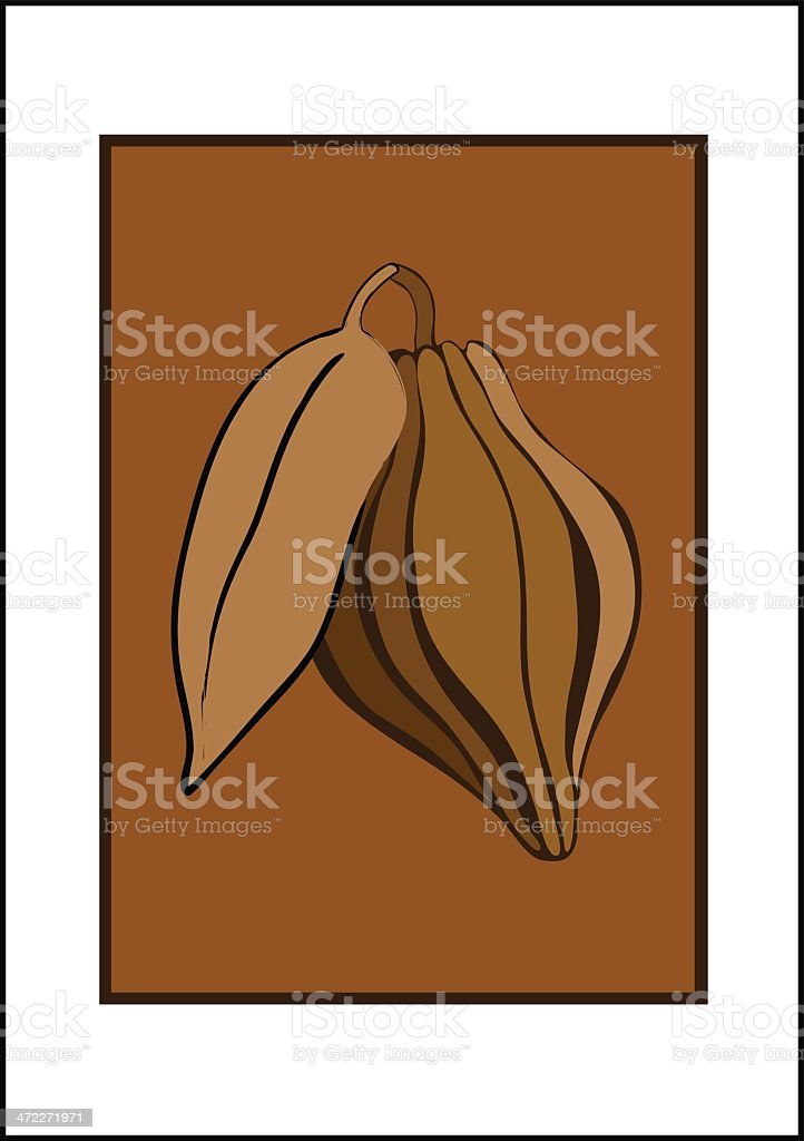 Cocoa Pod royalty-free stock vector art