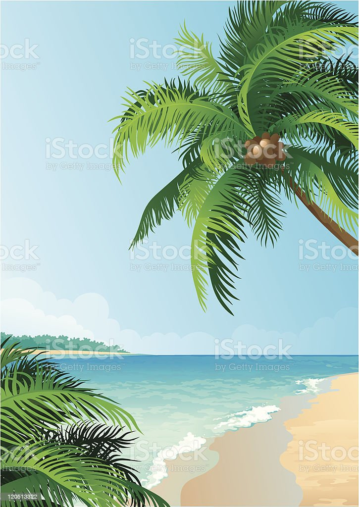 Coconut palm trees royalty-free stock vector art