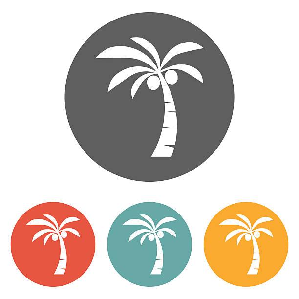 Coconut Clip Art, Vector Images & Illustrations - iStock