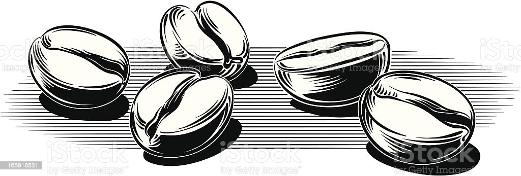 coffee beans vector art illustration