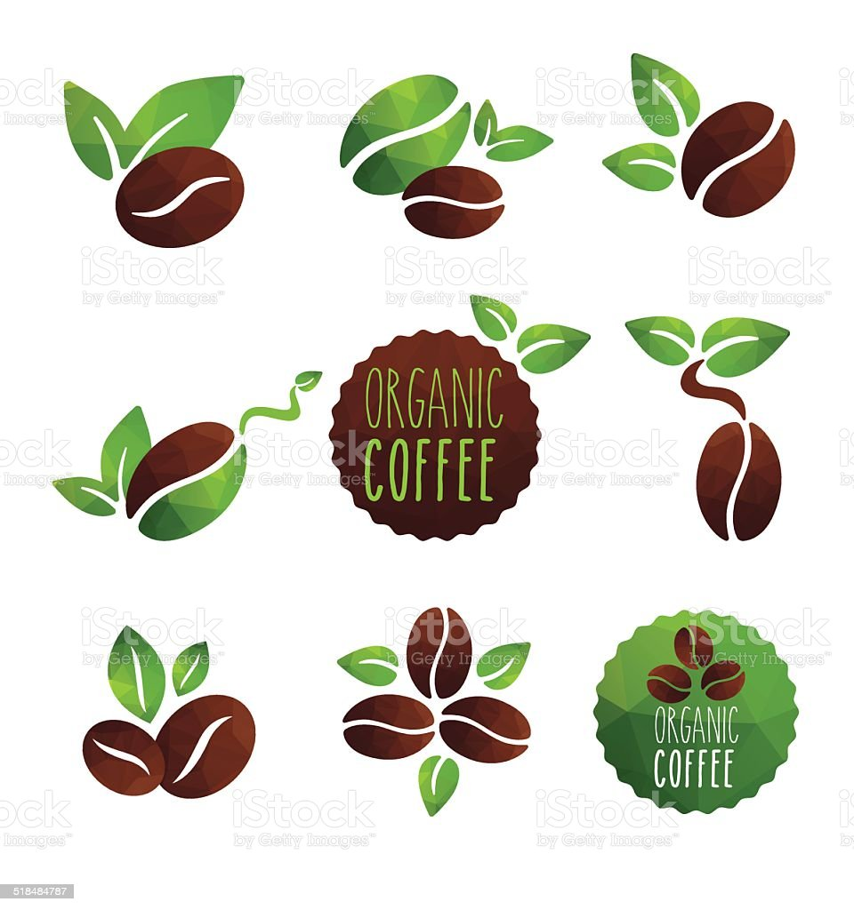 coffee organic vector art illustration