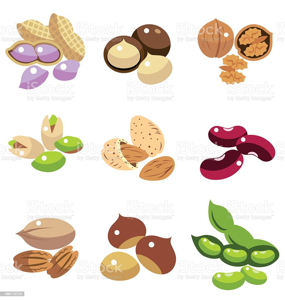 Collection of Beans vector art illustration
