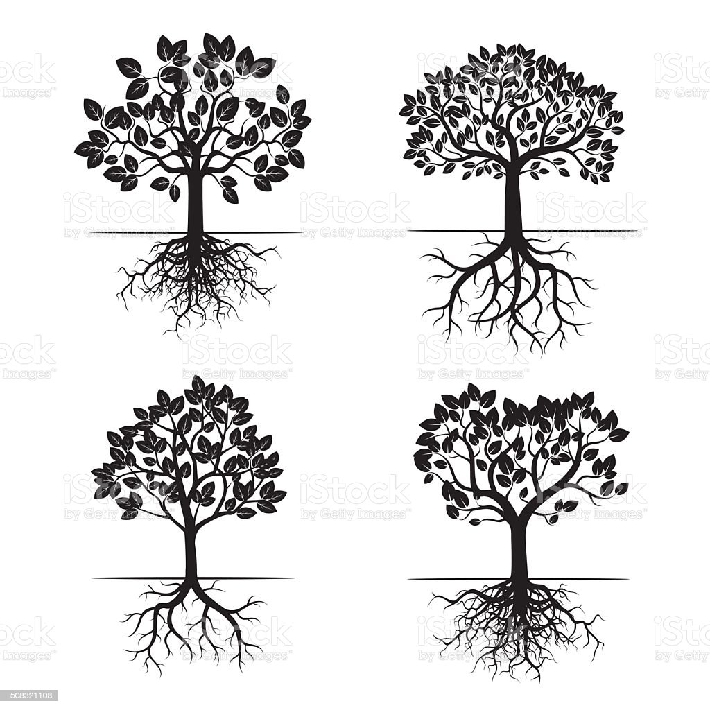 Collection of Black Trees and Roots. Vector Illustration. vector art illustration