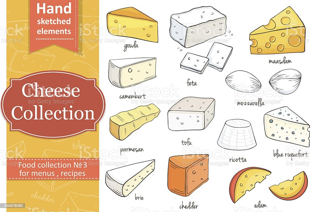 Collection of cheese. Cut sliced cheese assortment. vector art illustration