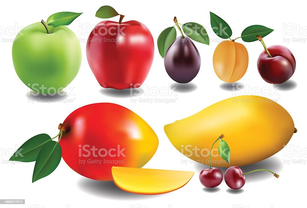 collection of fruits vector art illustration