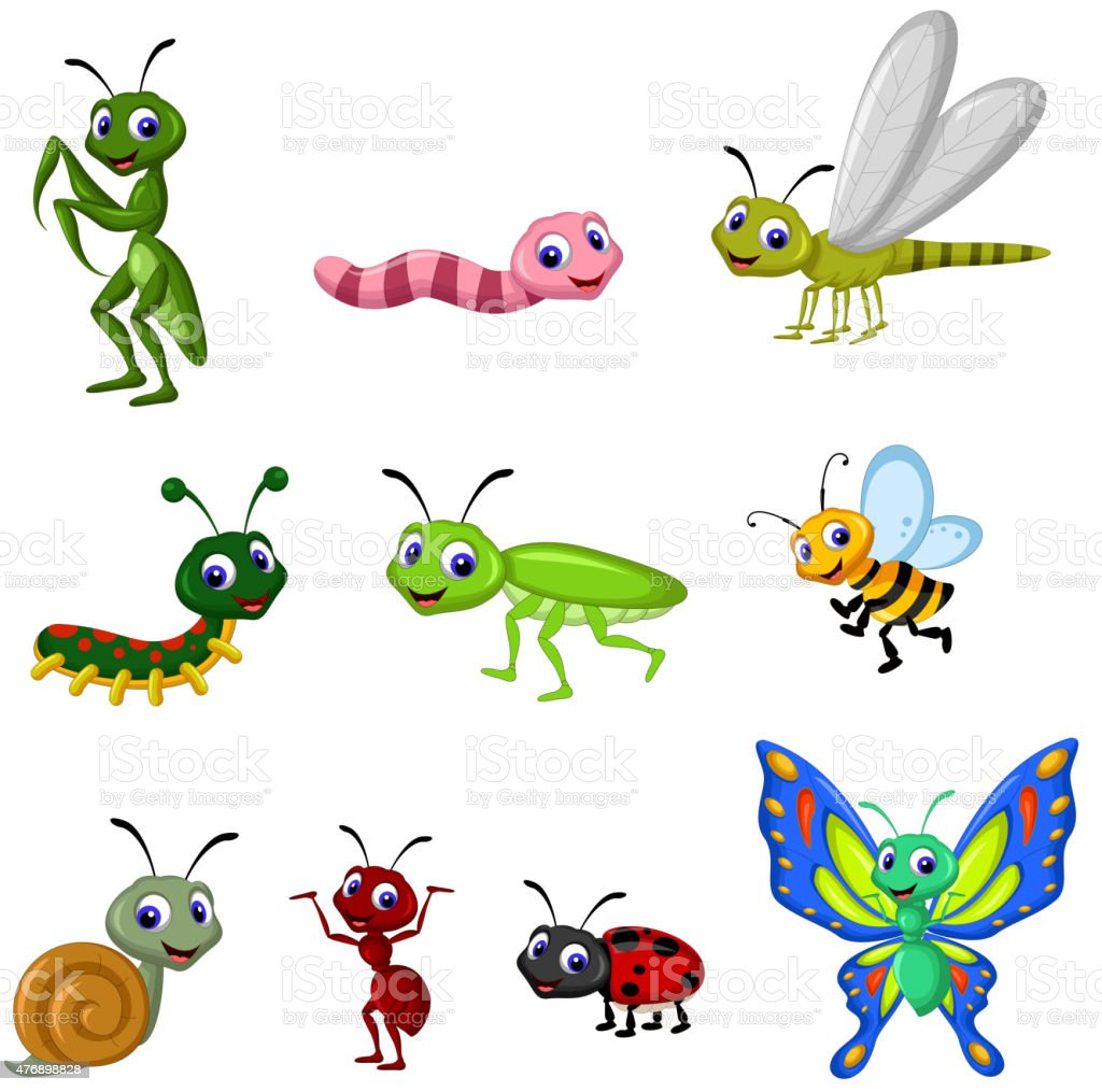 collection of insects cartoon vector art illustration