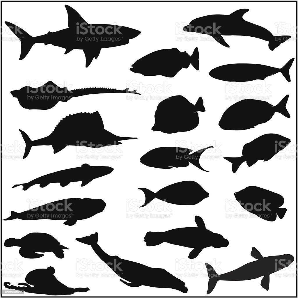 Collection of many fish and sea life silhouettes vector art illustration
