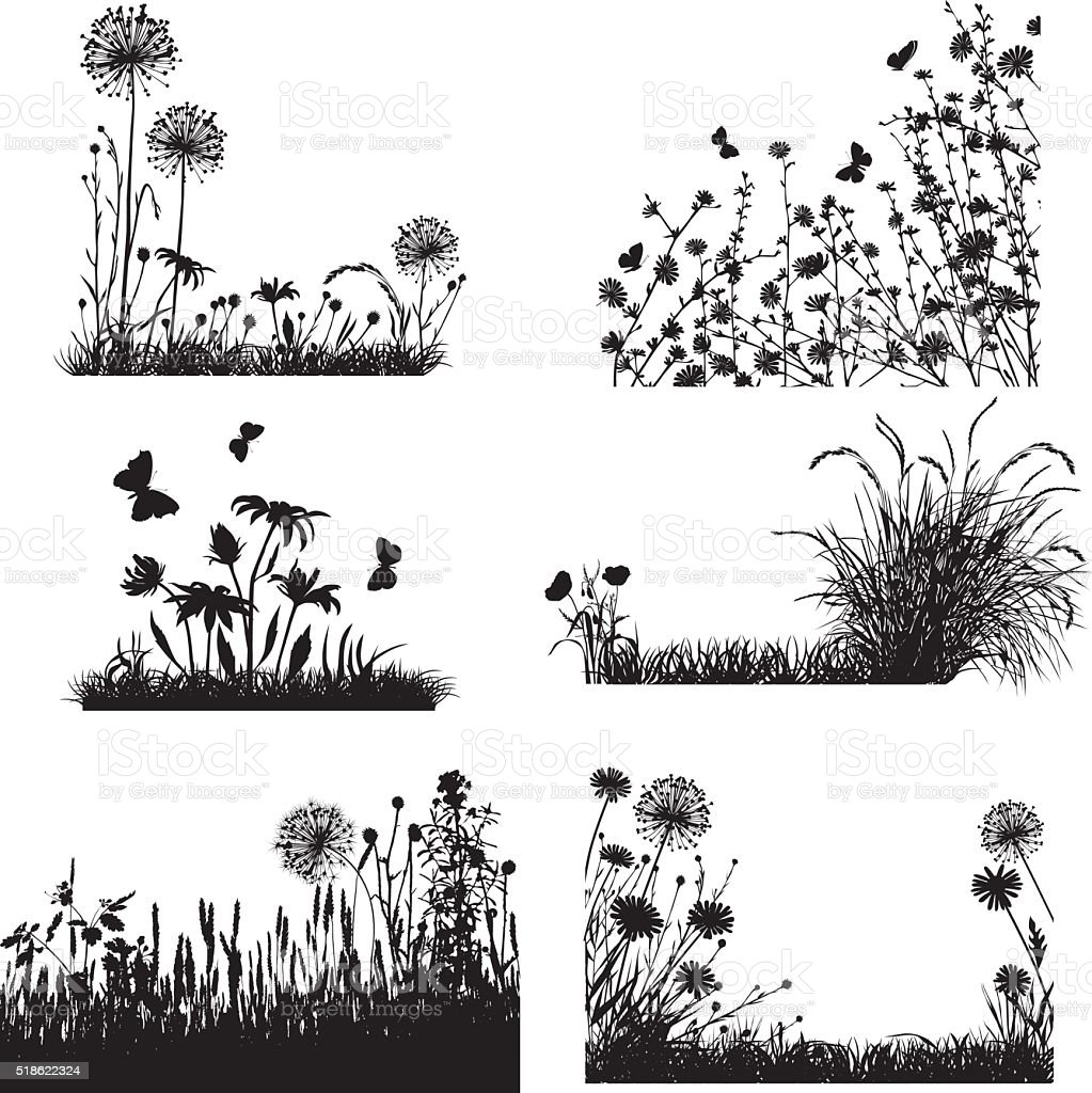 Collection of meadow plants vector art illustration