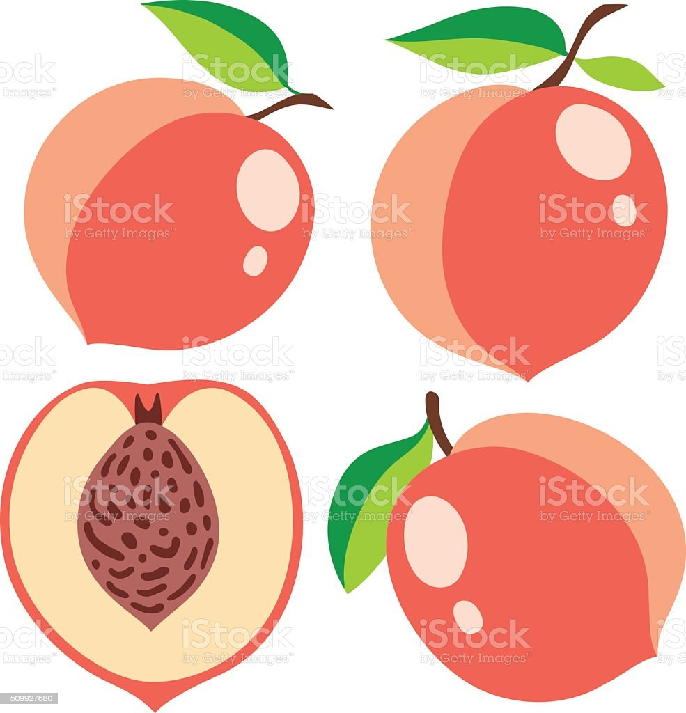 Collection of pink peaches, vector illustrations vector art illustration