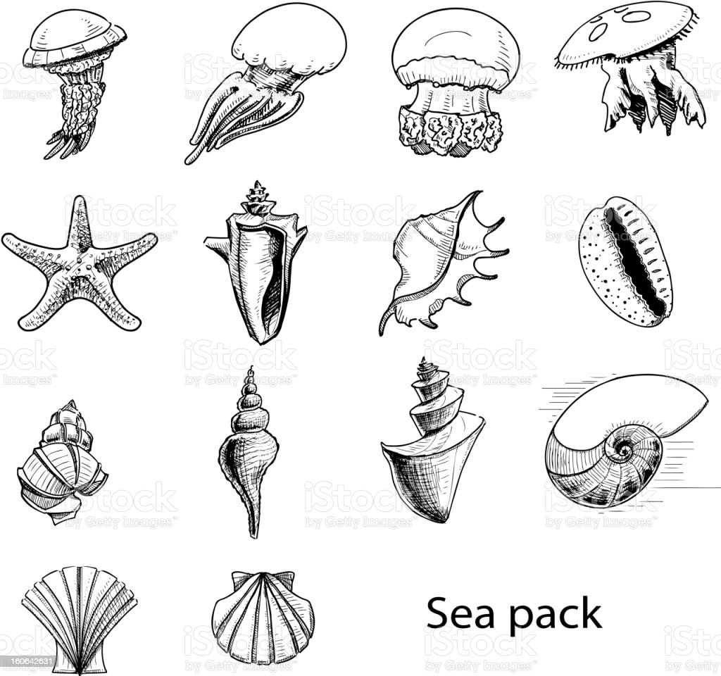 Collection of sea animals royalty-free stock vector art