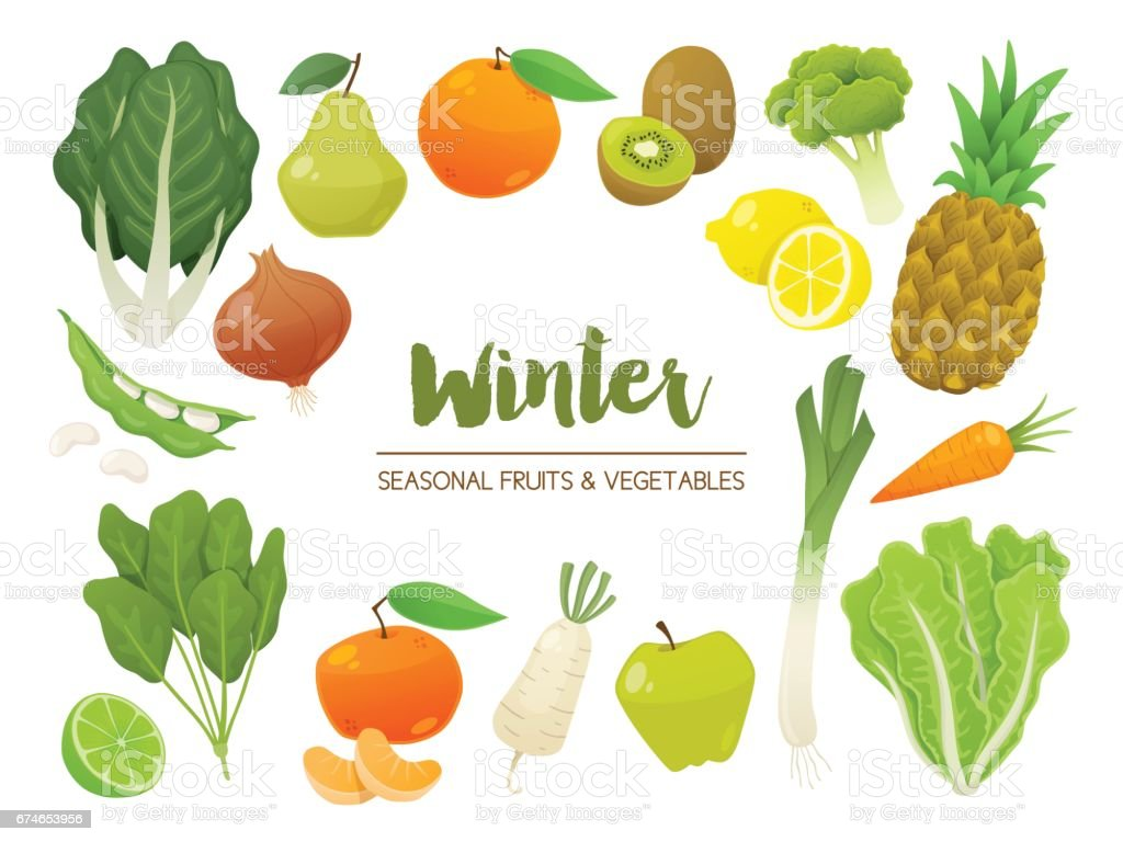 Collection of seasonal fruits and vegetables. Winter time collection. Vector EPS10 illustration. vector art illustration