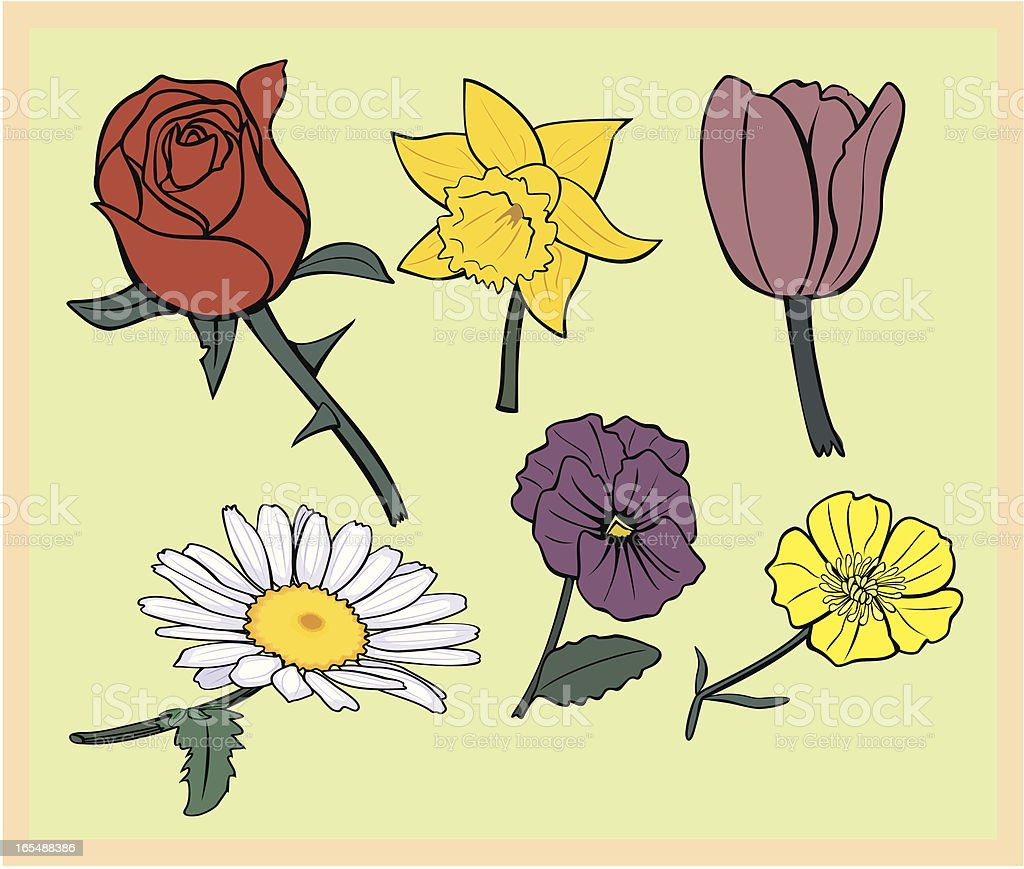 Collection of Six  Flowers vector art illustration