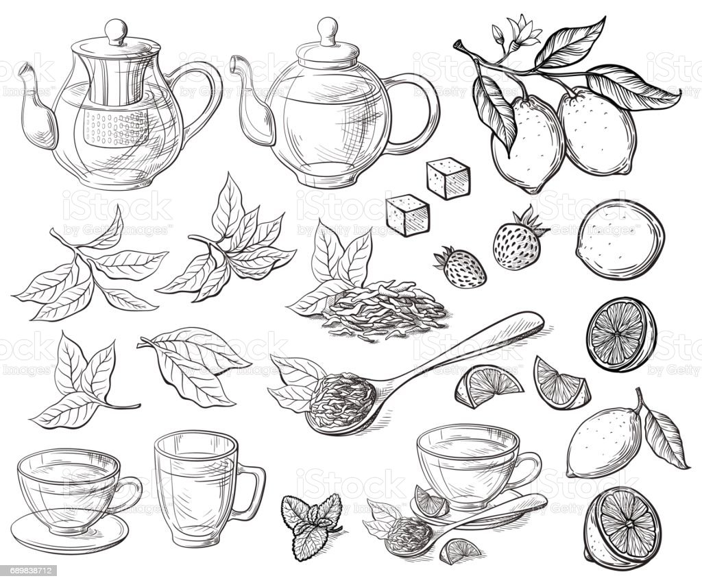Collection of tea leaves vector art illustration