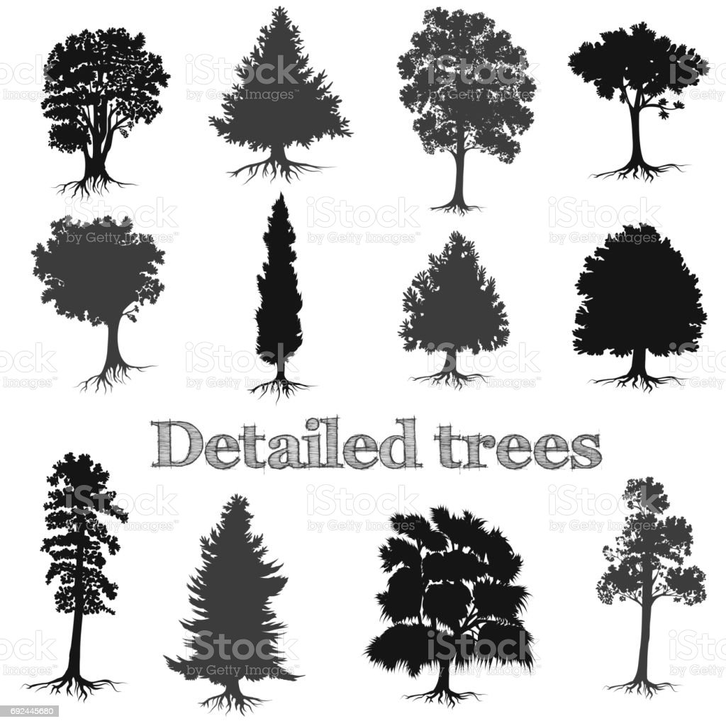 Collection of vector detailed hand drawn trees silhouettes for design vector art illustration