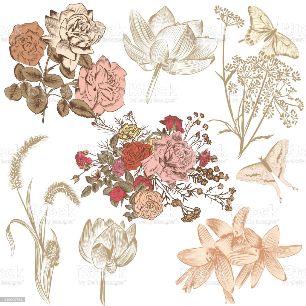 Collection of vector hand drawn flowers for design vector art illustration