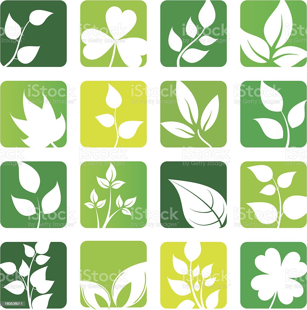collection of vector leaves icons royalty-free stock vector art