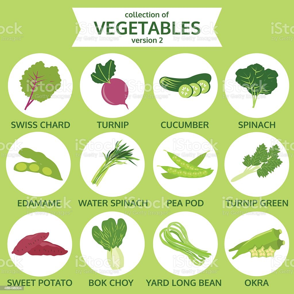 collection of vegetables, food vector illustration, icon set two vector art illustration