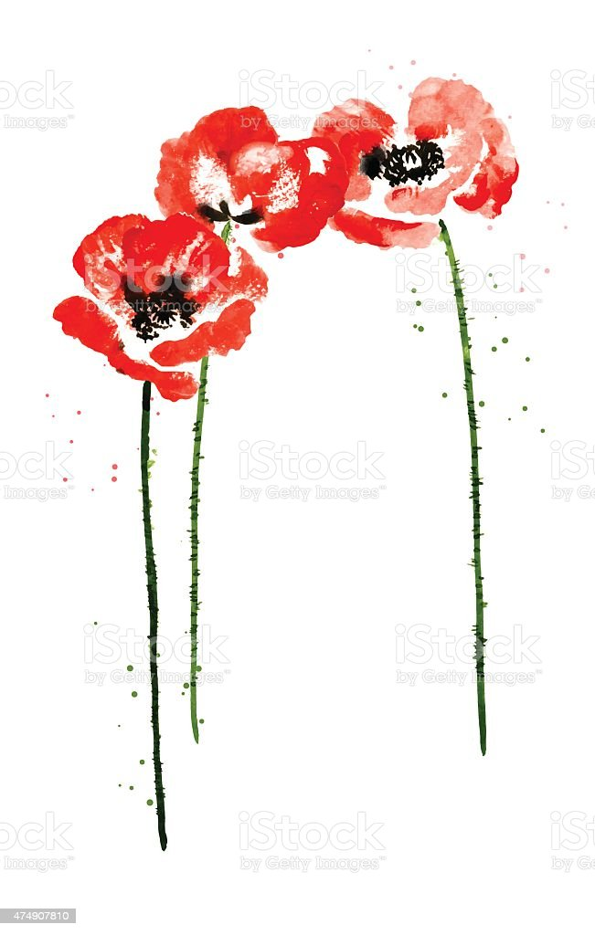 Collection of watercolor poppy flowers vector art illustration