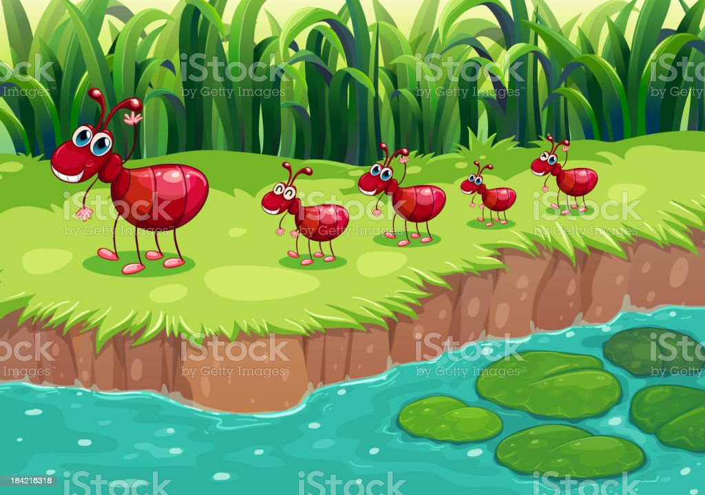 colony of red ants at the riverbank royalty-free stock vector art
