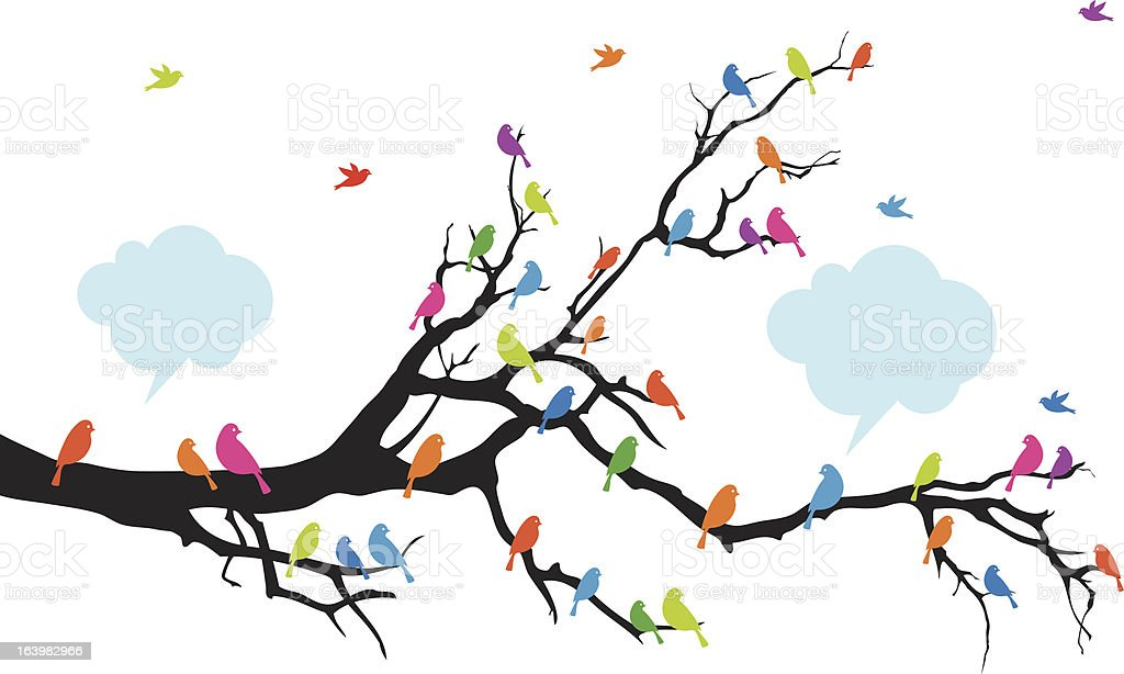 Color birds on tree, vector vector art illustration