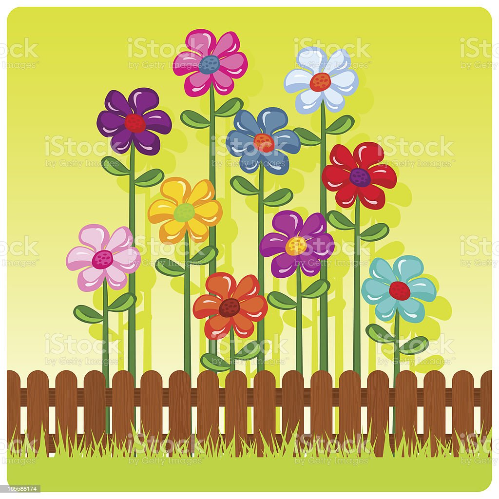Color daisies vector art illustration