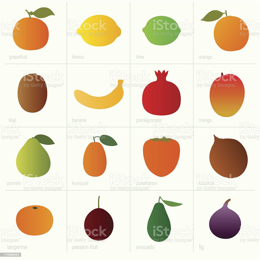 Color fruits vector art illustration