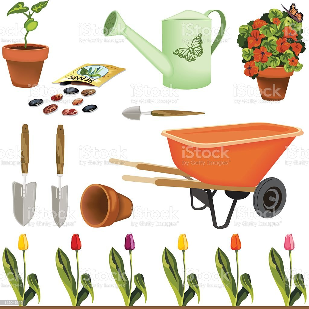 Color Gardening Elements Set - Seeds,Plants,Tools and Flowers royalty-free stock vector art