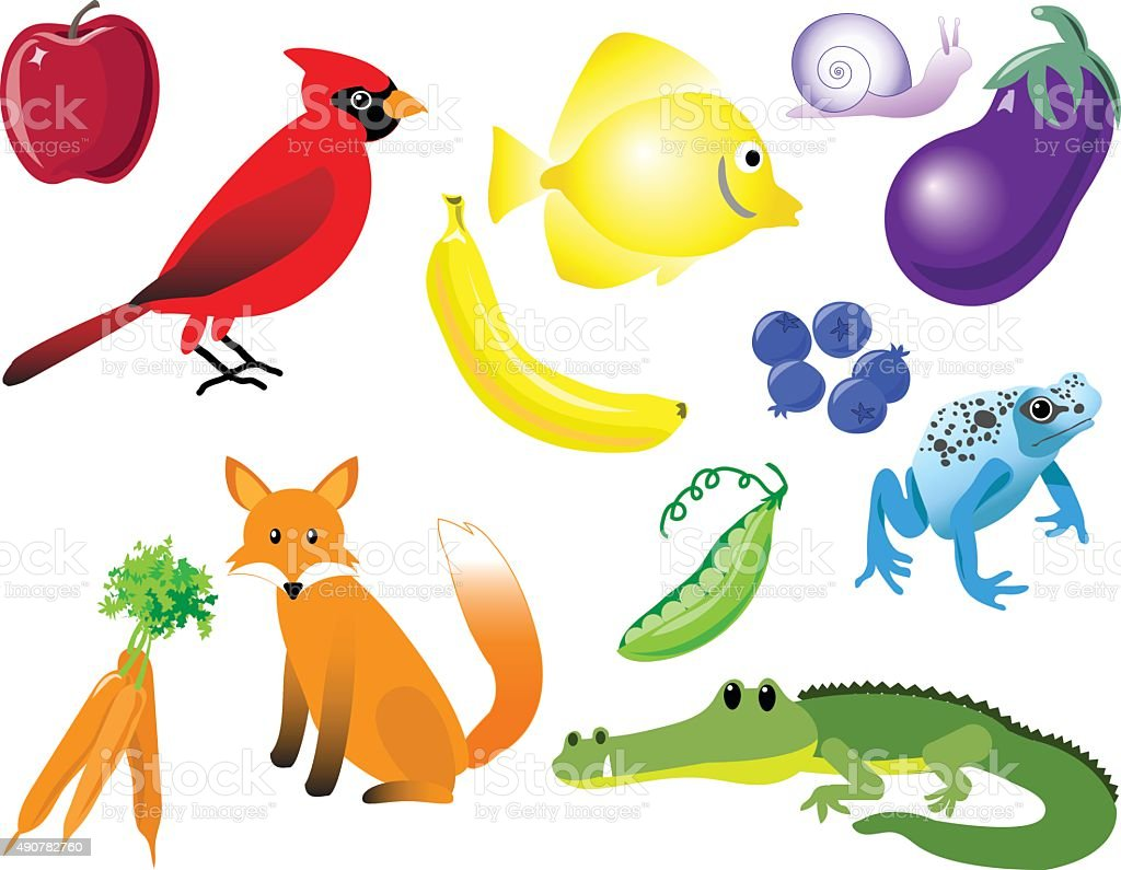 Color Matching Animals, Fruit, and Vegetables vector art illustration