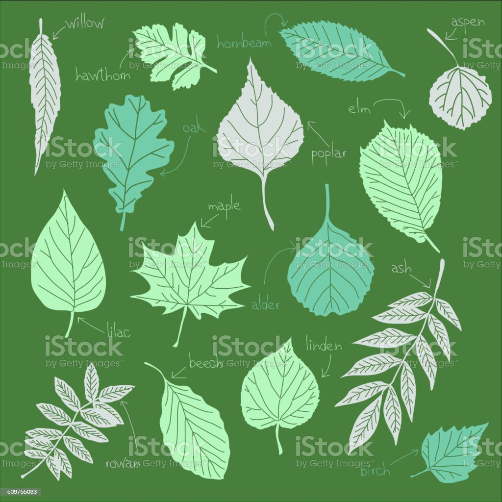 Color sheets vector art illustration