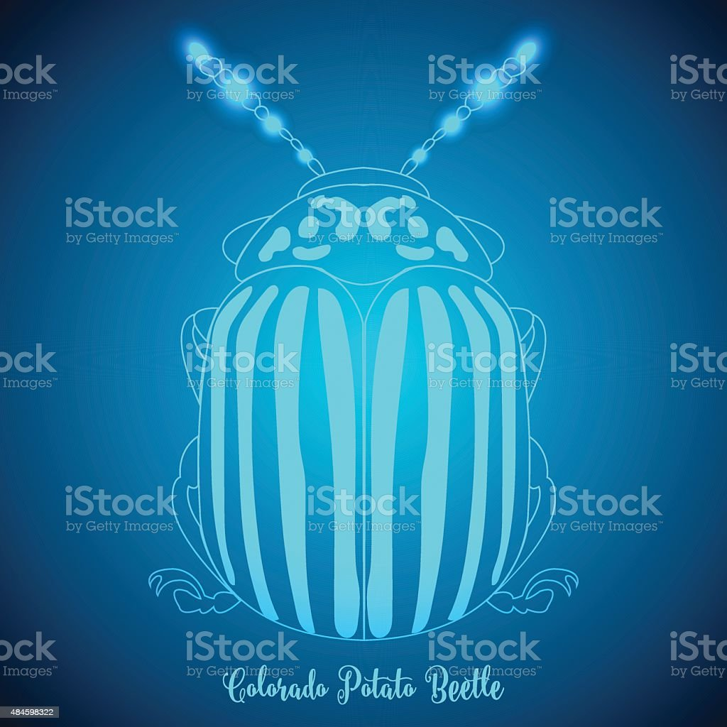 Colorado Potato Beetle and abstract backgrounds blue lights.vector illustration. vector art illustration